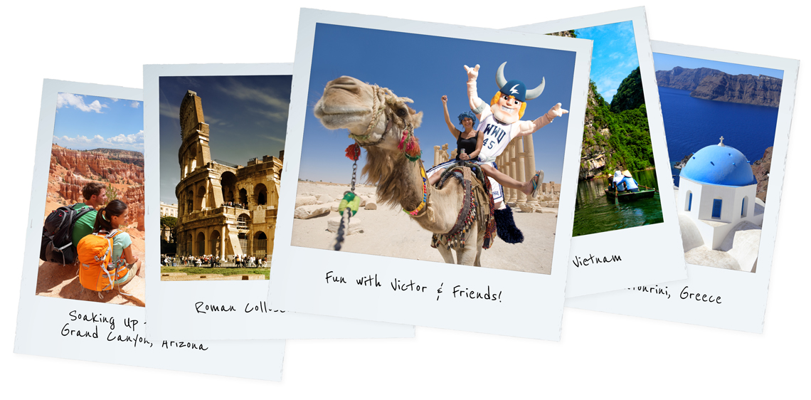 image of travel postcards including victor on a camel